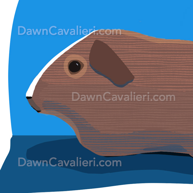 Illustration of a guinea pig named Digby, by Dawn Cavalieri, artist and illustrator.