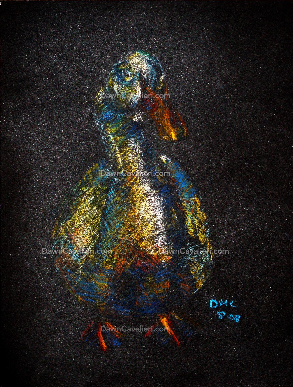 Pastel painting of Mr. Flapper, a pekin duck, by Dawn Cavalieri.