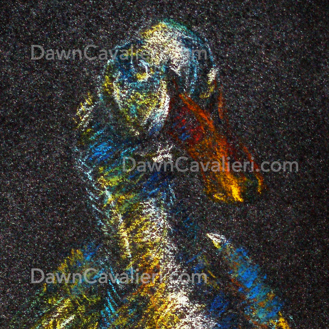 Pastel painting of a pekin duck named Mr. Flapper, by Dawn Cavalieri, artist and illustrator.