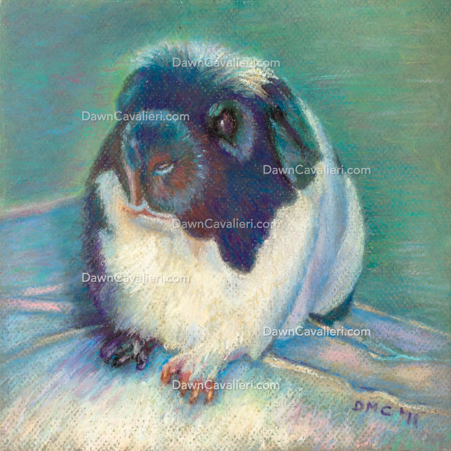 Portrait of a guinea pig named Mariusz, in pastel, by Dawn Cavalieri.