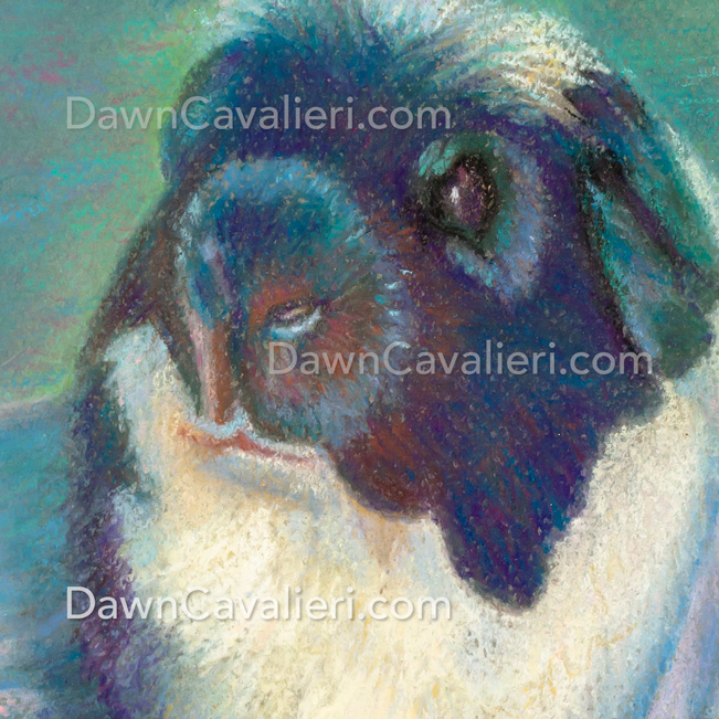 Are you looking to hire an artist? This is a pastel painting of a guinea pig named Mariusz, by Dawn Cavalieri, artist and illustrator.